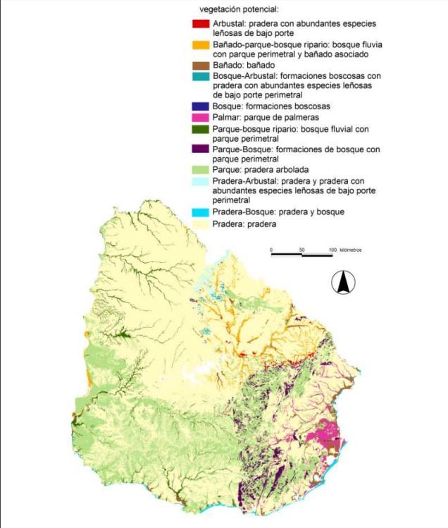 Mapa suelo según vegetación