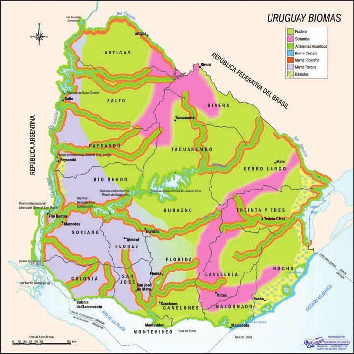 Mapa biomas Uruguay