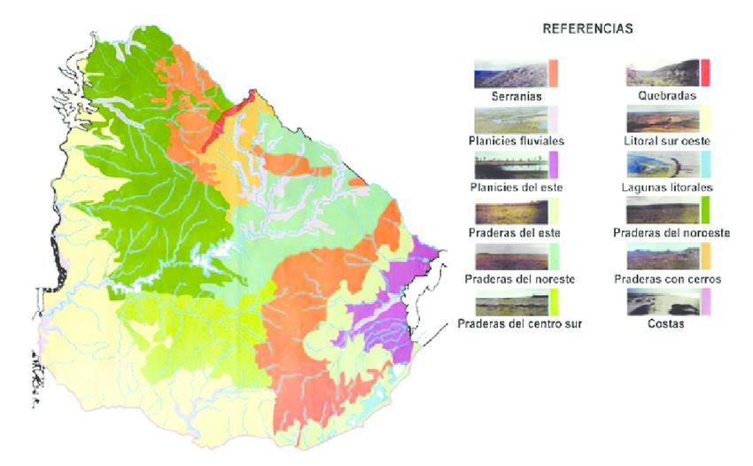 Mapa biomas Uruguay con fotos