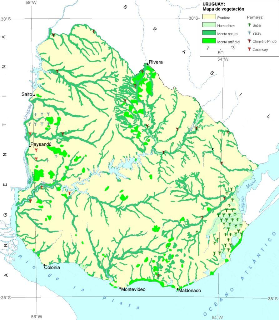 Mapa vegetación Uruguay